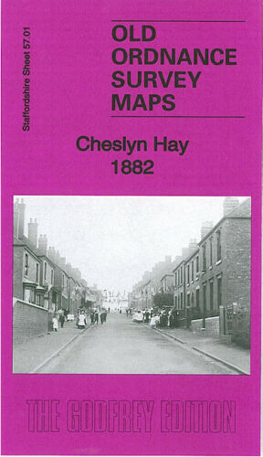 OLD ORDNANCE SURVEY MAP CHESLYN HAY 1882 GREAT WYRLEY LITTLEWOOD CHURCH BRIDGE