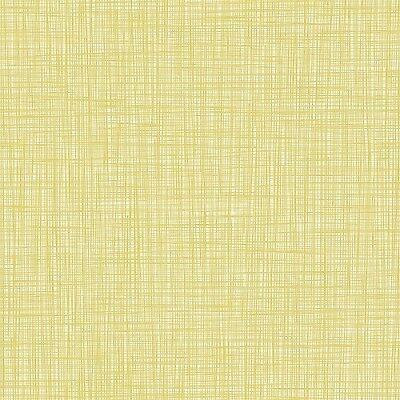 FREE POST Orla Kiely Scribble Lichen Wallpaper sample size or double rolls