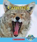 Coyotes by Jennifer Zeiger (Paperback / softback, 2013)