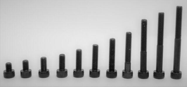 Zylinderschrauben M8x10 DIN 912 50 St/ück Festigkeit 8.8 mit Innensechskant schwarz