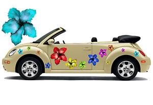 Hibiskus Blumen Hawaii Auto Aufkleber Blumenaufkleber Flower Power: Hibiscus 017 - Hamm, Deutschland - Hibiskus Blumen Hawaii Auto Aufkleber Blumenaufkleber Flower Power: Hibiscus 017 - Hamm, Deutschland
