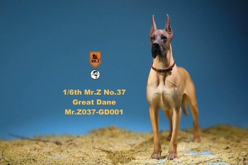 1 6 Mr. Z modelo animal Bomba de 37th MRZ037 GD001 alemán Gran danés Perro Mascota Figura