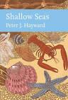 Shallow Seas by Peter J. Hayward (Hardback, 2016)
