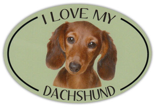 I Love My Dachshund Bumper Sticker Decal Oval Dog Breed Picture Car Magnet