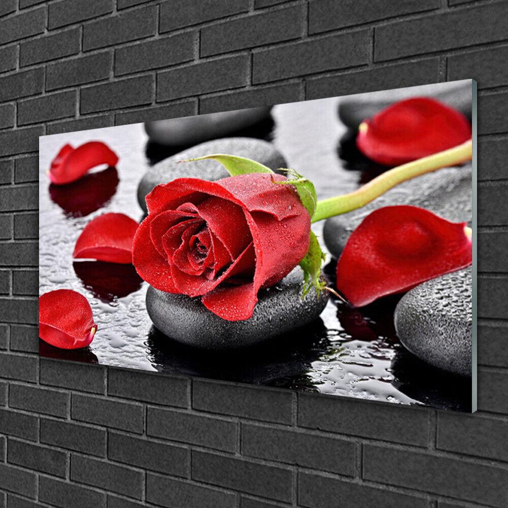 Acrylique Print Wall Art Image 100x50 photo rose pierres Floral