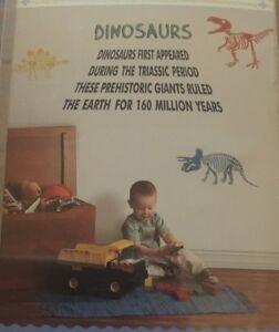 Next-Dinosaur-Wall-Stickers-BINB