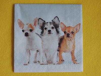 4 Motivservietten Servietten Tovaglioli Napkins Hund Hunde Schwarz Weiß 476