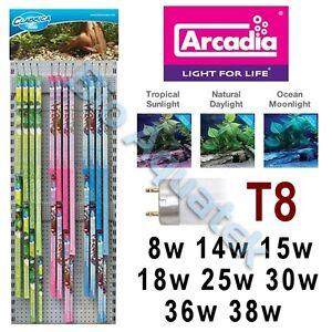 Arcadia-Classica-T8-Aquarium-Fish-Tank-Lamp-Bulb-Tube-Tropical-Marine-Light