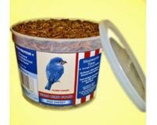 MEALWORMS 60,000 COUNT VALUE 6 TUBS ROASTED MEALWORMS