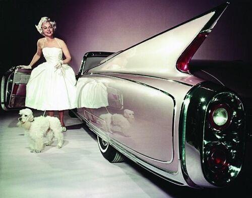 Refrigerator Magnet,40 MIL Woman w//Poodle 1960 Cadillac ELDORADO Convertible