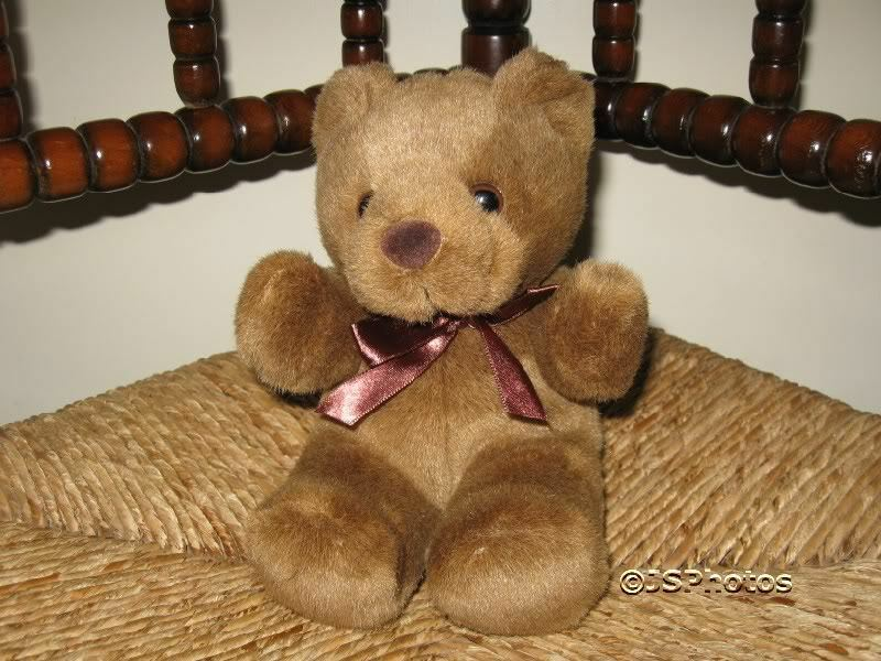 UK Sitting Brown Bear with Bow