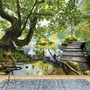 Details zu Fototapete Vlies Wald Baum Natur Landscaft - Schlafzimmer  Wohnzimmer (11235V8)