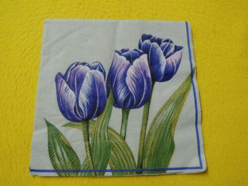 5 Servietten Blumen Tulpen Serviettentechnik Motivservietten PURPLE TULIPS lila