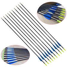 """10X 31"""" Heavy Duty Fiberglass Arrows Compound & Recurve Bow Hunting Archery AC"""