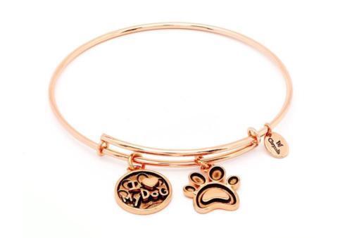 da511e6c1e18a Chrysalis Friend & Family I Love My Dog Rose Gold Plated Bangle Crbt0713rg