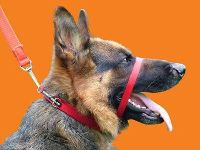 Canny Collar rot 7 Größen das Halsband an dem der Hund nicht an der Leine zieht