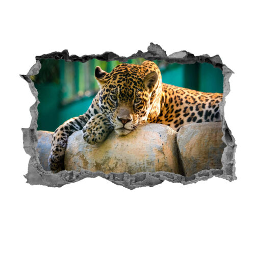 Leopard,Sticker,3D,Animals,Wall Art,Decal,Safari,Mural