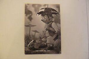 Alte-Mecki-Ansichtskarten-Echtfotos