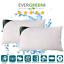 Cuscino-Letto-Ortopedico-Cervicale-Adatto-per-dormire-in-tutte-le-posizioni miniatura 1