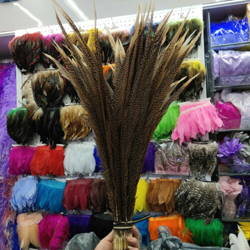 Hot Sale 10-100pcs Pretty 20-30 inches//50-75 cm Golden Pheasant Tail Feathers