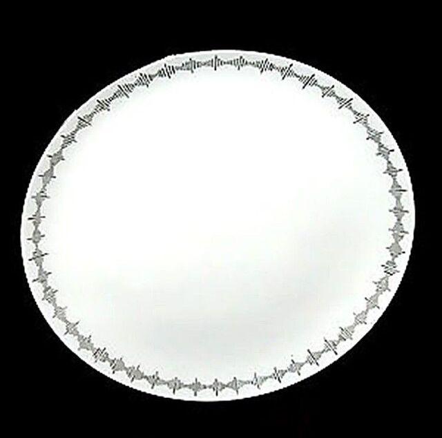 4 Wedgwood Vera Wang Notions Dinner Plates ENGLAND New