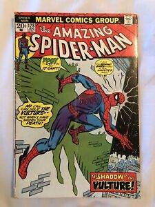 The amazing spider man an origin story book