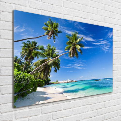 Glas-Bild Wandbilder Druck auf Glas 100x70 Deko Landschaften Tropischer Strand