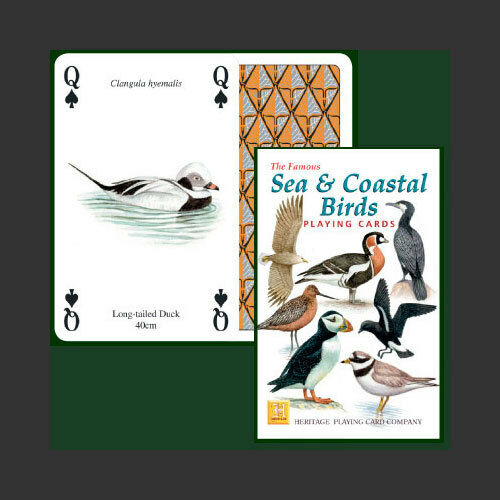 Sea and Coastal Birds Waders Gulls etc Collectable Playing Cards Game