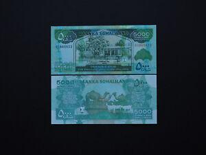 VIETNAM BANKNOTES Quality Polymer Set 20k 50k,100k Colourful    Mint UNC