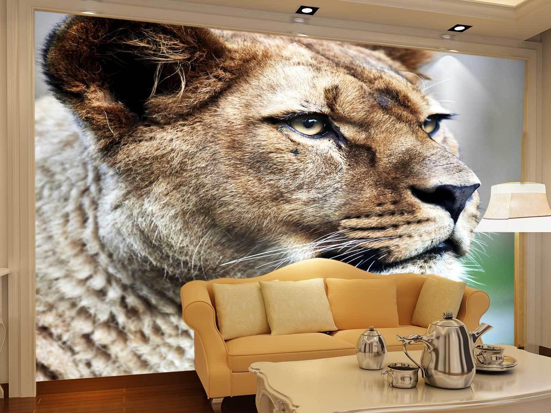 3D Lion Poster 742  Wall Paper Murals Wall Print Wall Wallpaper Mural AU Kyra