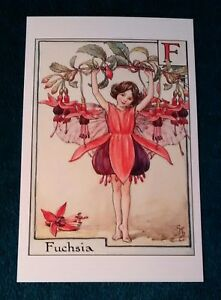 CICELY-MARY-BARKER-FLOWER-FAIRIES-POSTCARD-THE-FUCHSIA-FAIRY-FLOWER-ALPHABET