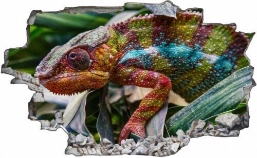 Tier Fotografie Leguan Reptil Natur Wandtattoo Wandsticker Wandaufkleber C1743