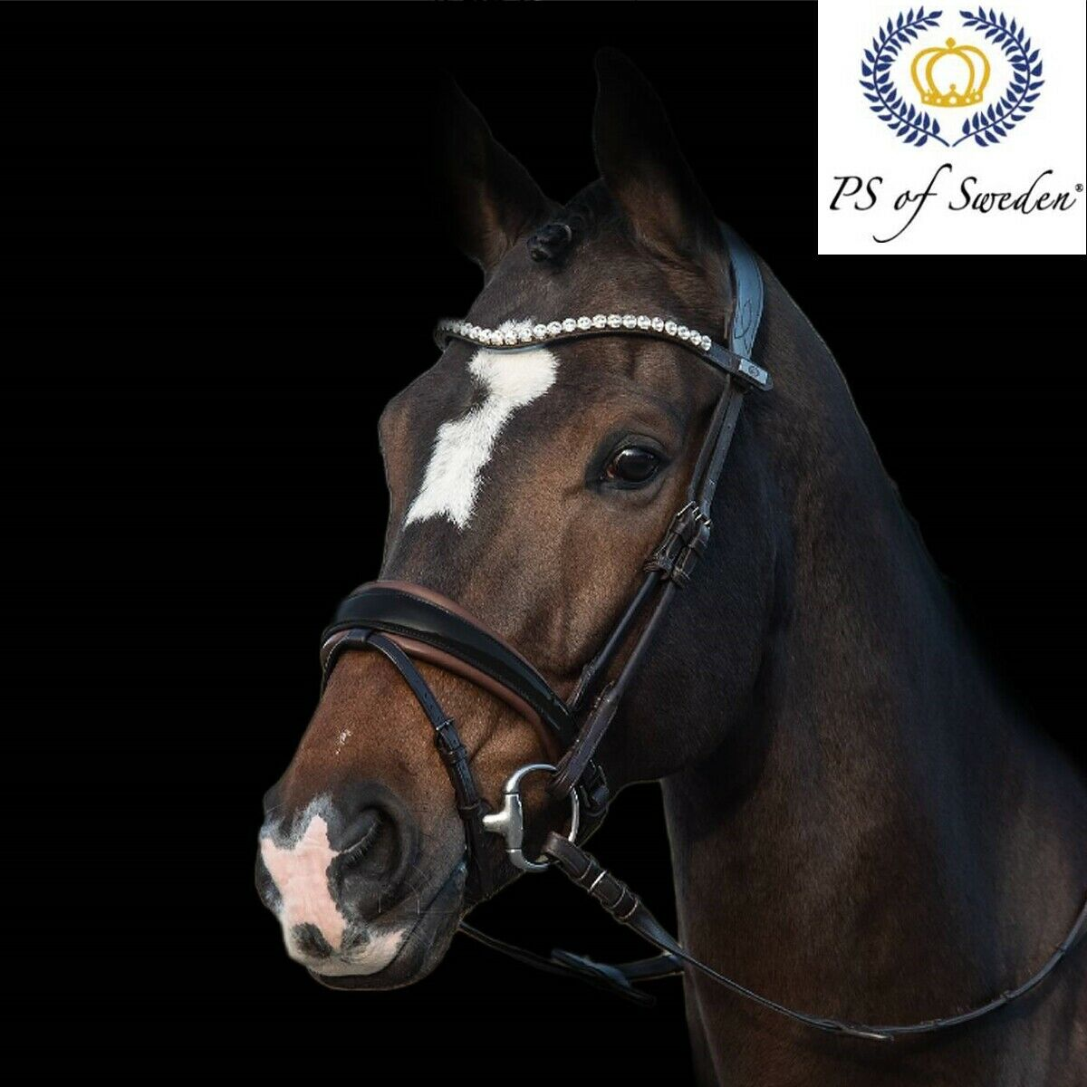 PS of Sweden GP Bridle - Free UK Shipping