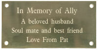 THICK BRASS PLAQUE 100x50mm 1.5 mm BEVELLED EDGE ENGRAVED WITH YOUR WORDS