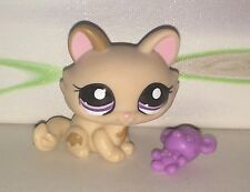 Authentic Littlest Petshop #1444 Kitty Cat Purple Eyes Chat Sphinx + Accessories