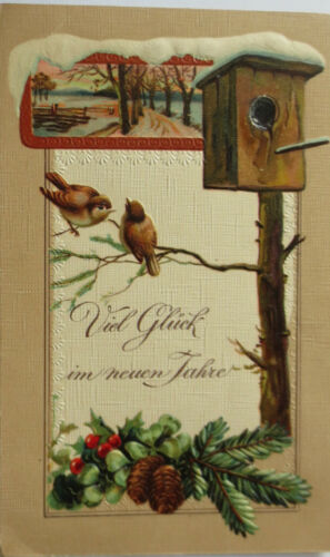 """ New Year,Bird,Bird House "" 1907,Series P. F.H 11228,Embossed Postcard 1183"