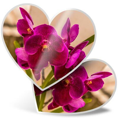 2 x Heart Stickers 10 cm Pretty Pink Orchid Flower  #3542