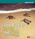 Sea Turtles' Race to the Sea: A Cause and Effect Investigation by Kathy Allen (Hardback, 2010)