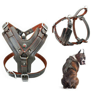 Dog Collars & Leads Large Dog Harness Genuine Leather Adjustable Heavy Duty Vest For Pit Bull Boxer