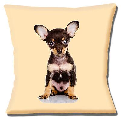 "Chihuahua Duo Dog Gift Beautiful Large /'Cuddle Cushion/'  approx 18/"" x 16/"""