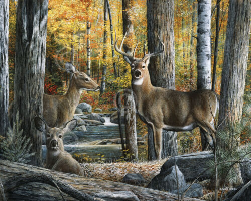 Broken Silence II by Kevin Daniel Deer Buck Poster 8x10 WILDLIFE ART PRINT
