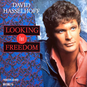 David-Hasselhoff-12-034-Looking-For-Freedom-Germany-VG-VG