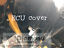 ECU Cover Carbon Effect CLIO 4 RS,