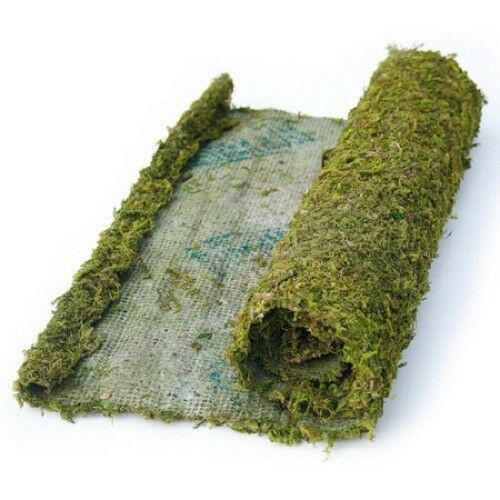BESTSELLING Real Moss Runner 4/' for Weddings Table Setting TableScape
