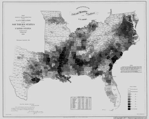 1861 SLAVE MAP BRYAN BULLOCH BURKE BUTTS CALHOUN CAMDEN CAMPBELL COUNTY GA Huge