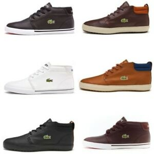 White Ampthill Title Details Original Show About Sneakers High 731spm0098 Lacoste Black Leather nPwNX0k8O