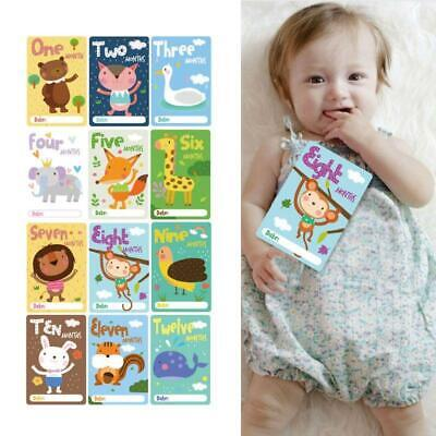 12 Sheet Milestone Photo Sharing Cards Baby Age Cards Newborn Photography Props