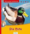Meine große Tierbibliothek: Die Ente von Pascale Hédelin (2012, Gebundene Ausgabe)