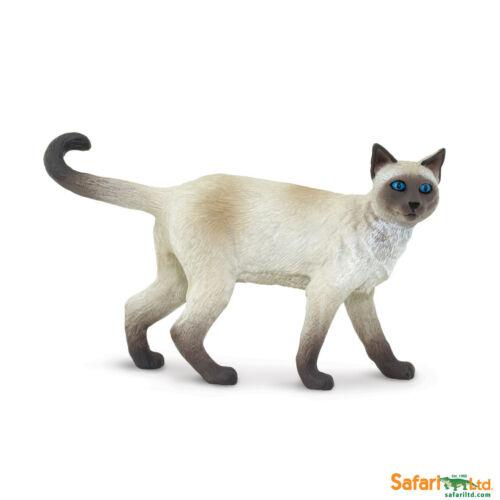 Safari ltd 100061 Chat Siamois 8 CM Série Astérisque Le Exposition