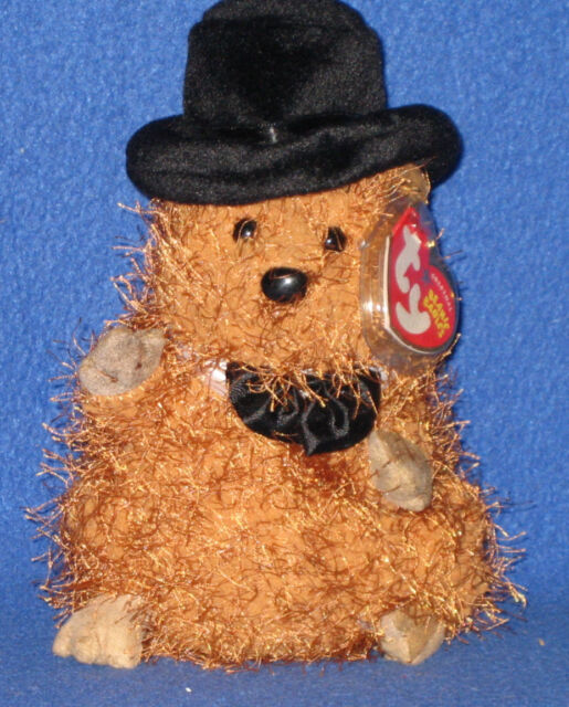 4653289c667 TY PUNXSUTAWNEY PHIL 2005 GROUNDHOG BEANIE BABY - MINT with MINT TAGS
